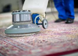Carpet Cleaner Sarasota