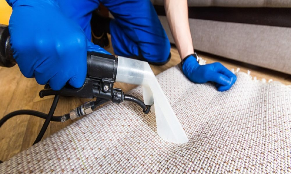 Why Do We Need Experts For Cleaning Carpets Carbocleaner