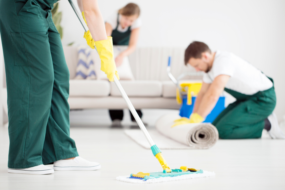 Maintaining a Clean Carpet - Carbocleaner